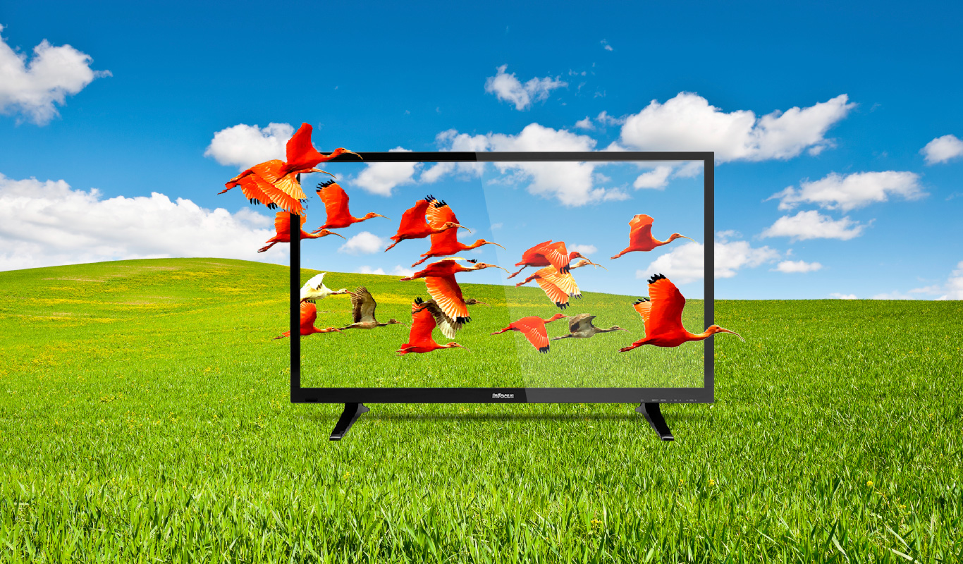 InFocus LED TVs now also in 40″ – #FlipkartUnique