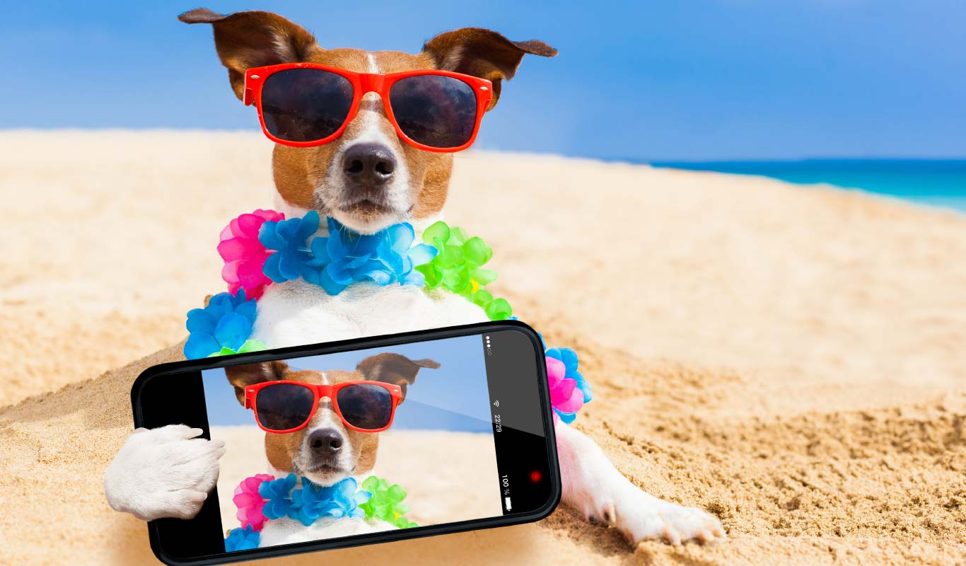 10 selfie smartphones to check out in 2016